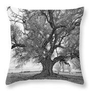 On The Delta Monochrome Throw Pillow by Steve Harrington