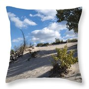 On The Dune Throw Pillow
