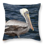 On The Edge - Brown Pelican Throw Pillow