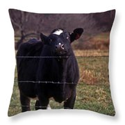 On The Edge Of Madness Throw Pillow