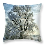 On The Edge Of The Marsh Throw Pillow