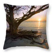 On The Edge Of The Surf Throw Pillow