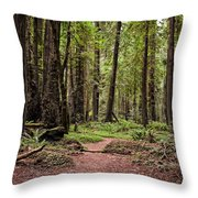 On The Enchanted Path Throw Pillow