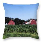 On The Farm In Belle Plaine Throw Pillow