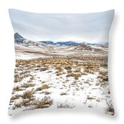 On The Fence Line Throw Pillow by Fran Riley