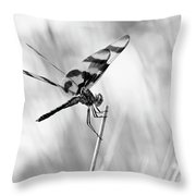 On The Launch Pad Throw Pillow
