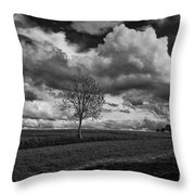 On The Plateau Throw Pillow