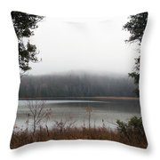 On The Platte Throw Pillow