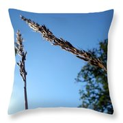 On The Prairie #10 Throw Pillow