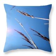 On The Prairie #12 Throw Pillow