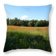 On The Prairie #5 Throw Pillow