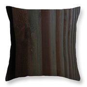 On The Riverfront 9 Throw Pillow