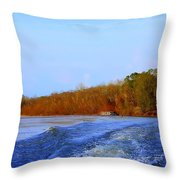 On The Rivers Bend Throw Pillow