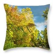 On The Road To Autumn Throw Pillow