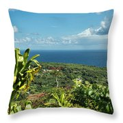 on the road to Hana Throw Pillow
