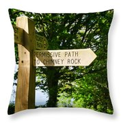 On The Road To Ruin Throw Pillow