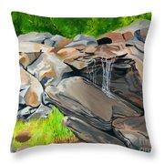 On The Rocks Throw Pillow