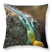 On The Rocks Throw Pillow by Inge Johnsson