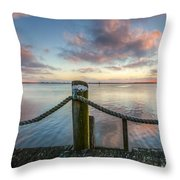 On The Ropes Throw Pillow