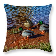 On The Shore Throw Pillow