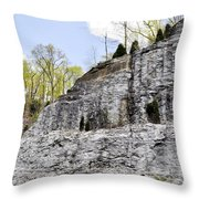 On The Side Of The Mountain Throw Pillow