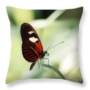 On The Tips Of My Toes Throw Pillow