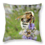 On The Top Throw Pillow
