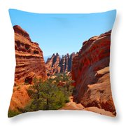 On The Trail At Arches Np Throw Pillow
