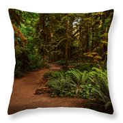 On The Trail To .... Throw Pillow by Randy Hall