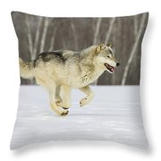 On The Trot Throw Pillow