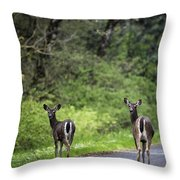 On The Way Home Throw Pillow