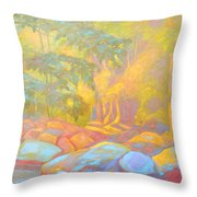 On The Way To The Cascades Throw Pillow