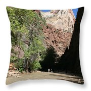 On The Way To The Narrows Throw Pillow