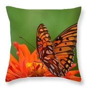 On The Wings Of A Butterfly Throw Pillow