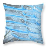 On The Wings Of A Winter Wind Throw Pillow