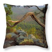 On Top Of Flatside Pinnacle Throw Pillow