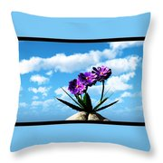 On Top Of The World... Throw Pillow