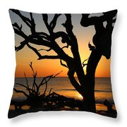 Once A Mighty Oak Throw Pillow