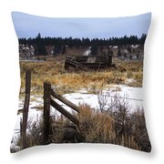 Once A Shelter Throw Pillow