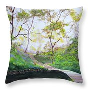 Once Around The Park Throw Pillow