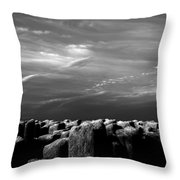 Once There Was A Place Throw Pillow
