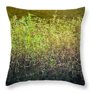 Once Upon An Egret's Home Throw Pillow
