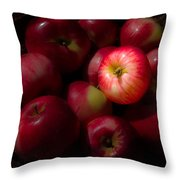 One A Day Throw Pillow