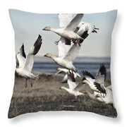 One After Another Throw Pillow