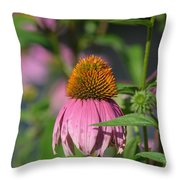 One Among The Coneflowers Throw Pillow
