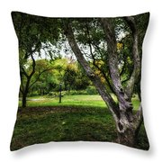 One Autumn Day - Central Park - Nyc Throw Pillow