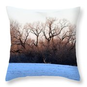 One Buck At A Time Throw Pillow