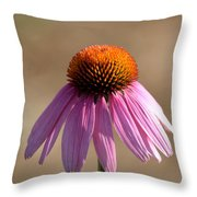 One Coneflower Throw Pillow