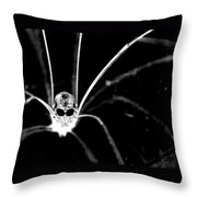 One Creepy Spider... Throw Pillow