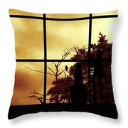 One Crow Outside My Window Throw Pillow